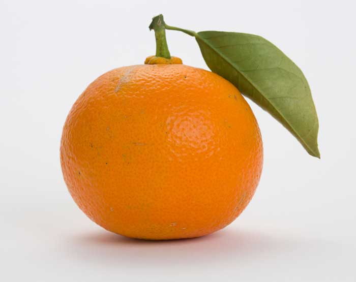 What Does Synephrine Do? Bitter Orange, p-Synephrine, Citrus