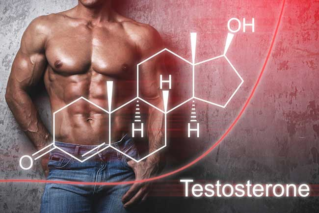 What are the Best Testosterone Boosting Supplements to Take