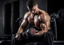 build bigger muscles