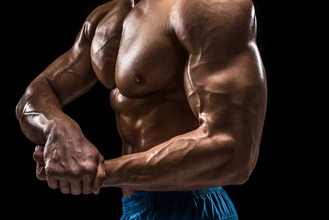 SARMs for Bodybuilding - What do they do? Are they Safer
